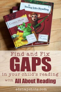 All About Reading Review   Everyday Snapshots
